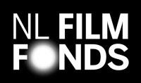 Projectleiding En Implementatie Registratiesysteem Bij Het Nederlands Filmfonds